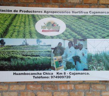 Visita a una Asociación de Productores de hortalizas