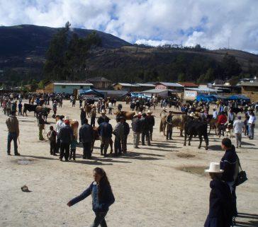 Feria ganadera de Celendín
